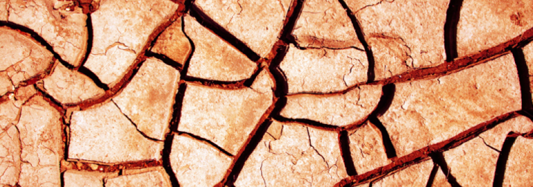 Dried and cracked soil