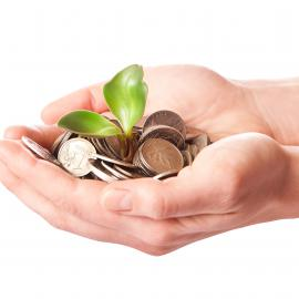 Hands holding a pile of coins with a sprouting plant emerging from the coins